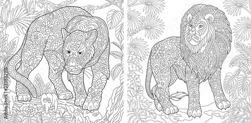 Fototapeta premium Kolorowanki z panterą i lwem