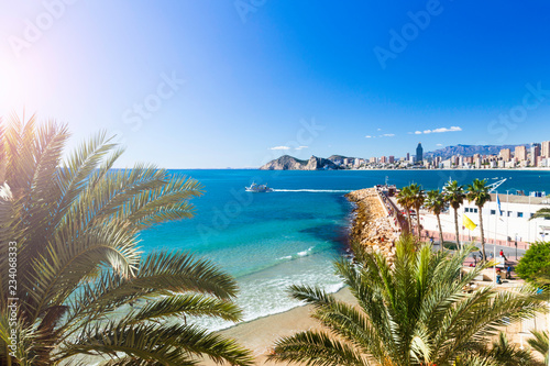 Poniente beach with palm trees, the port, skyscrapers and mountains , Benidorm Spain