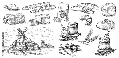 Stampa su Tela collection of natural elements of bread and flour mill sketch vector illustratio