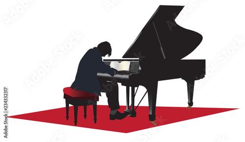 Fotografie, Obraz Piano player vector illustration