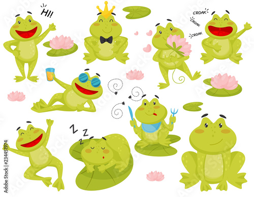 Obraz na płótnie Flat vector set of frog in different actions
