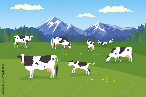 Foto Landscape with forest, meadow, mountains and pasturing herb of cows in various p