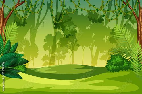 Photo A green jungle landscape