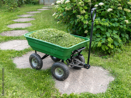 Obraz na płótnie Garden trolley with mown grass on the path on the background with a blooming hydrangea