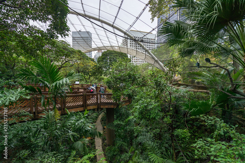 Wallpaper Mural Edward Youde Aviary at the Hong Kong Park features a collection exotic and tropi