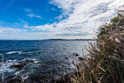 Fotografija 猿島 Sarushima island in Tokyo bay