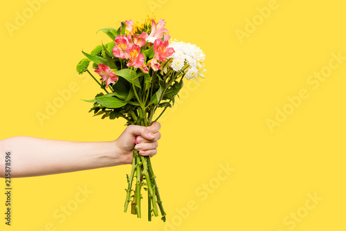 Obraz na plátne cropped shot of person holding beautiful bouquet of flowers isolated on yellow