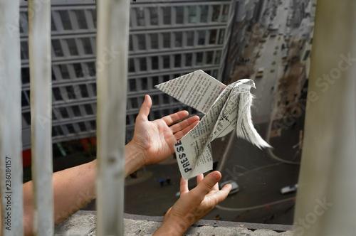 Canvas Print Ein Journalist lässt  eine aus einer Zeitung gefaltete Friedenstaube aus dem Fen