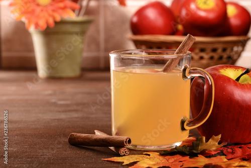 Canvas Print closeup mug of apple cider with cinnamon stick