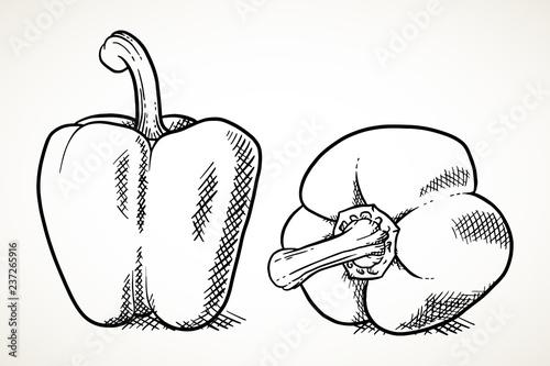 Obraz na płótnie Sweet peppers vegetable illustration