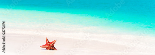 Stampa su Tela Tropical white sand with red starfish in clear water