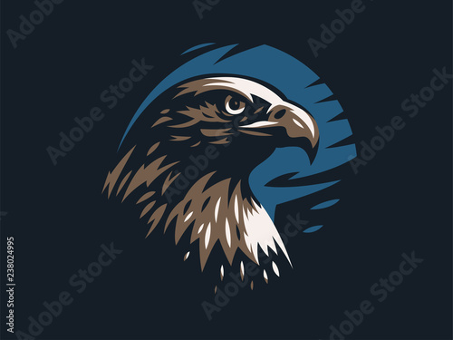 Fototapeta Eagle or hawk with outstretched wings.