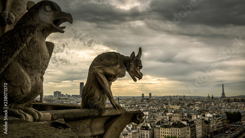 Fotografia, Obraz Gargoyles on Notre Dame de Paris overlooking Paris, France
