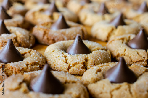 Peanutbutter blossom cookies on cutting board, macro view of rows of cookies
