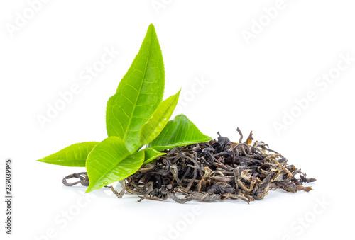 Fototapeta fresh green tea leaf and dry  isolated on white background