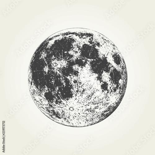 Realistic full Moon. Detailed monochrome vector illustration