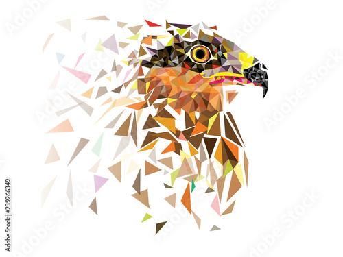 Fototapeta Eagle in low polygon geomatric pattern design vector eps10