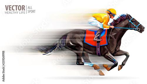 Fotografie, Obraz Jockey on racing horse