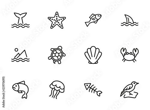 Fototapeta premium Zestaw ikon linii stworzeń morskich. Zestaw ikon linii na białym tle. Koncepcja morska. Muszla, żółw, ryba, wieloryb. Ilustracja wektorowa może służyć do tematów takich jak morze, ocean