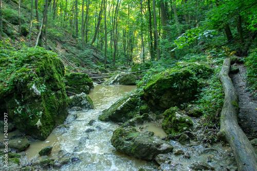 Foto Gerence creek
