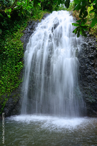 Wallpaper Mural View of a cascading waterfall in Tahiti, French Polynesia