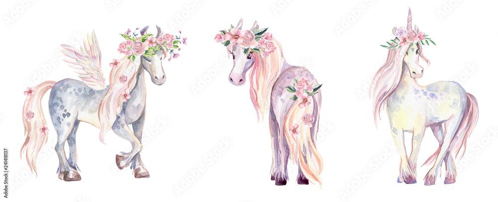 Magic Unicorn, Pegasus and Pony. Akwarela ilustracja, beauti <span>plik: #241418137   autor: dinkoobraz</span>