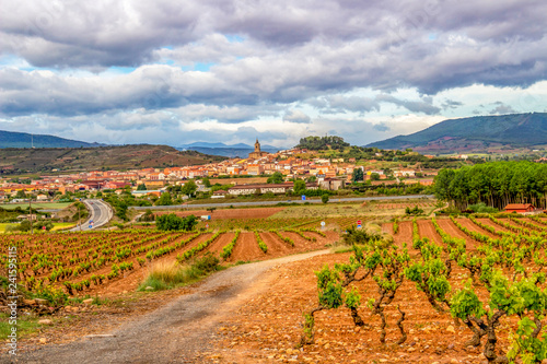Beautiful May landscape in La Rioja, Spain on the Way of St. James, Camino de Santiago with vineyards, red clay and the town of Navarrete in the distance