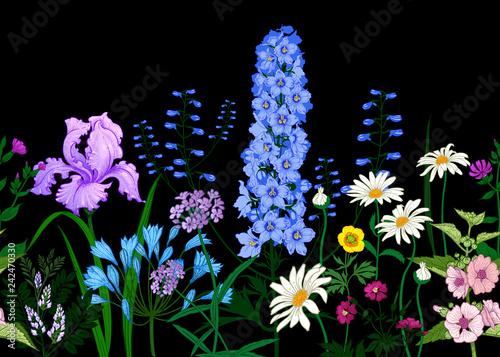Obraz na płótnie BorderÊwith Wild flowers