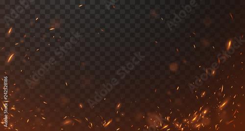 Fotografie, Obraz Fire sparks background