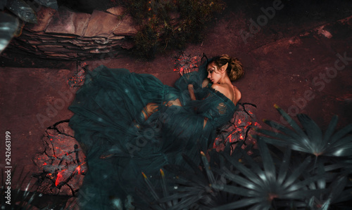 Fotografie, Tablou The girl elf in a chic dress lies on the floor among the flowers