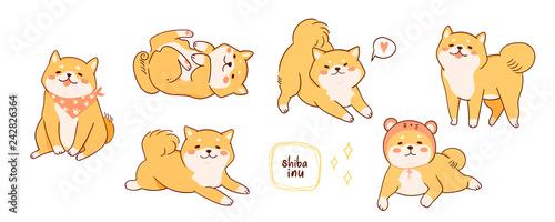 Photographie Kawaii Shiba Inu dogs in various poses