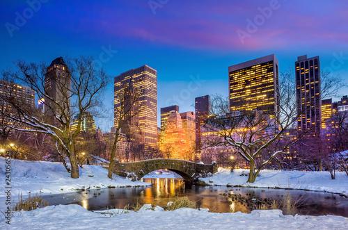 Fotografia Gapstow bridge in winter