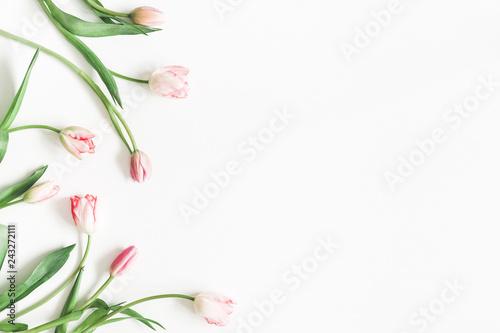 Fototapeta premium Kompozycja kwiatów. Różowy tulipan kwitnie na białym tle. Walentynki, koncepcja dzień matki. Leżał płasko, widok z góry, miejsce kopiowania