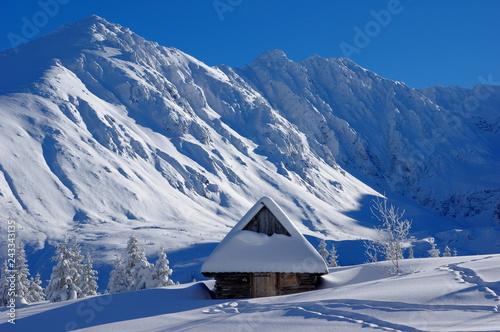 Fototapeta premium tatrzański zimowy pejzaż z zaśnieżoną chatką w Dolinie Gąsienicowej