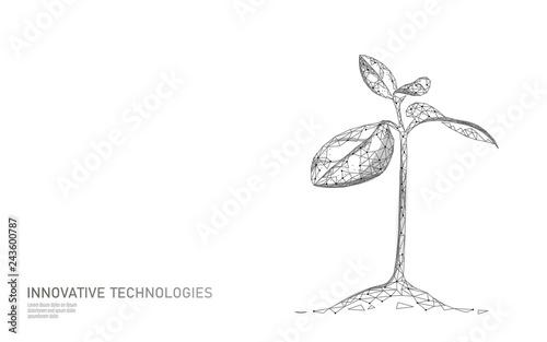 Plant sprout ecological abstract concept Tapéta, Fotótapéta