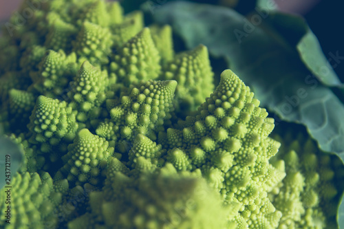 Detail of romanesque cauliflower fractal forms