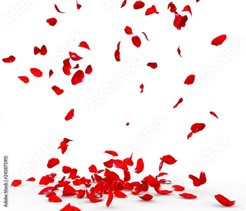Photo Many rose petals fall on the floor