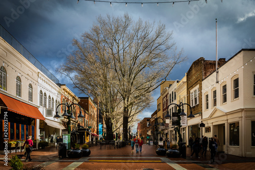 Canvas Print Small downtown buildings with tree on walking mall
