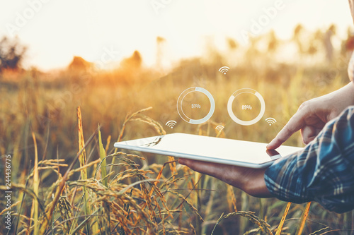 Canvas-taulu Smart farming Agricultural technology and organic agriculture Woman using the re