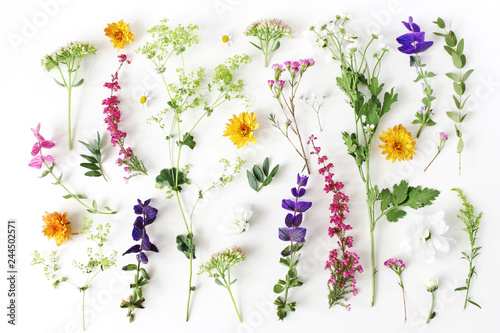Summer botanical pattern. Floral composition of fewerfew, erica, sage and chrysanthemum flowers and green alchemilla plants on white wooden background. Styled stock photo. Flat lay, top view.