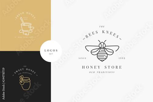 Cuadros en Lienzo Vector set illustartion logos and design templates or badges
