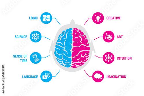 Valokuva Left and right human brain concept