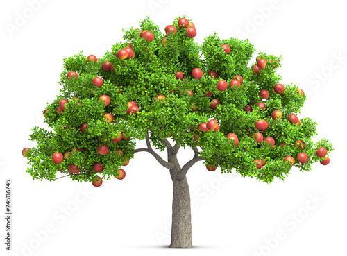 Obraz na płótnie a red apple tree isolated 3D illustration