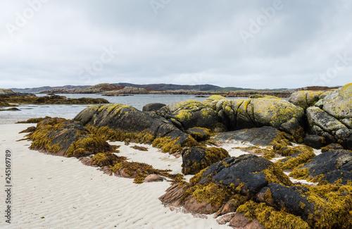Fototapeta Shore at western point of the Isle of Mull, Scotland