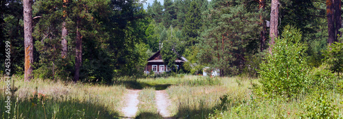 old little house in the forest in summer in the sunlight
