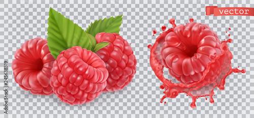 Fotografia Raspberry. Sweet fruit. 3d realistic vector icon