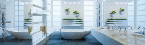 Photo Contemporary Bathroom Adaptation - Panoramic View