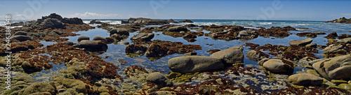 Fotografia rock pools in California