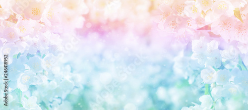 Photo Floral spring background