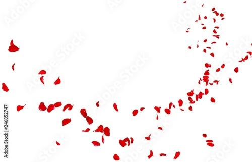 Fototapeta premium W oddali lecą czerwone płatki róż
